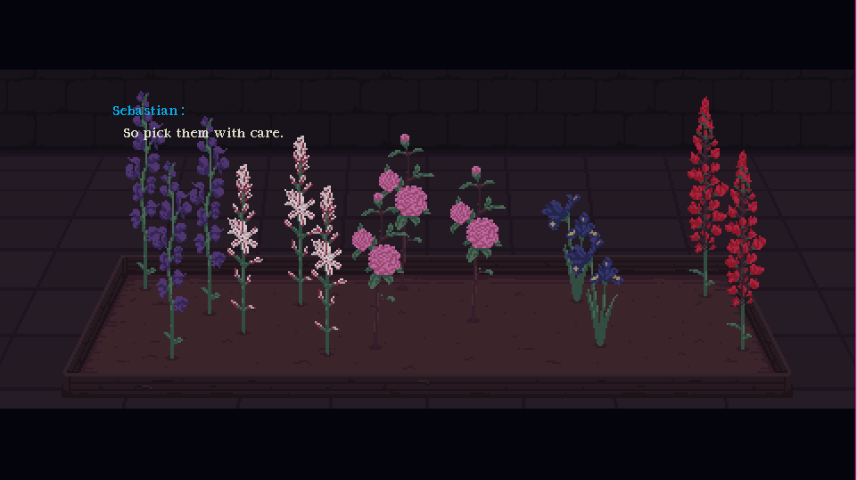 some flowers in soil